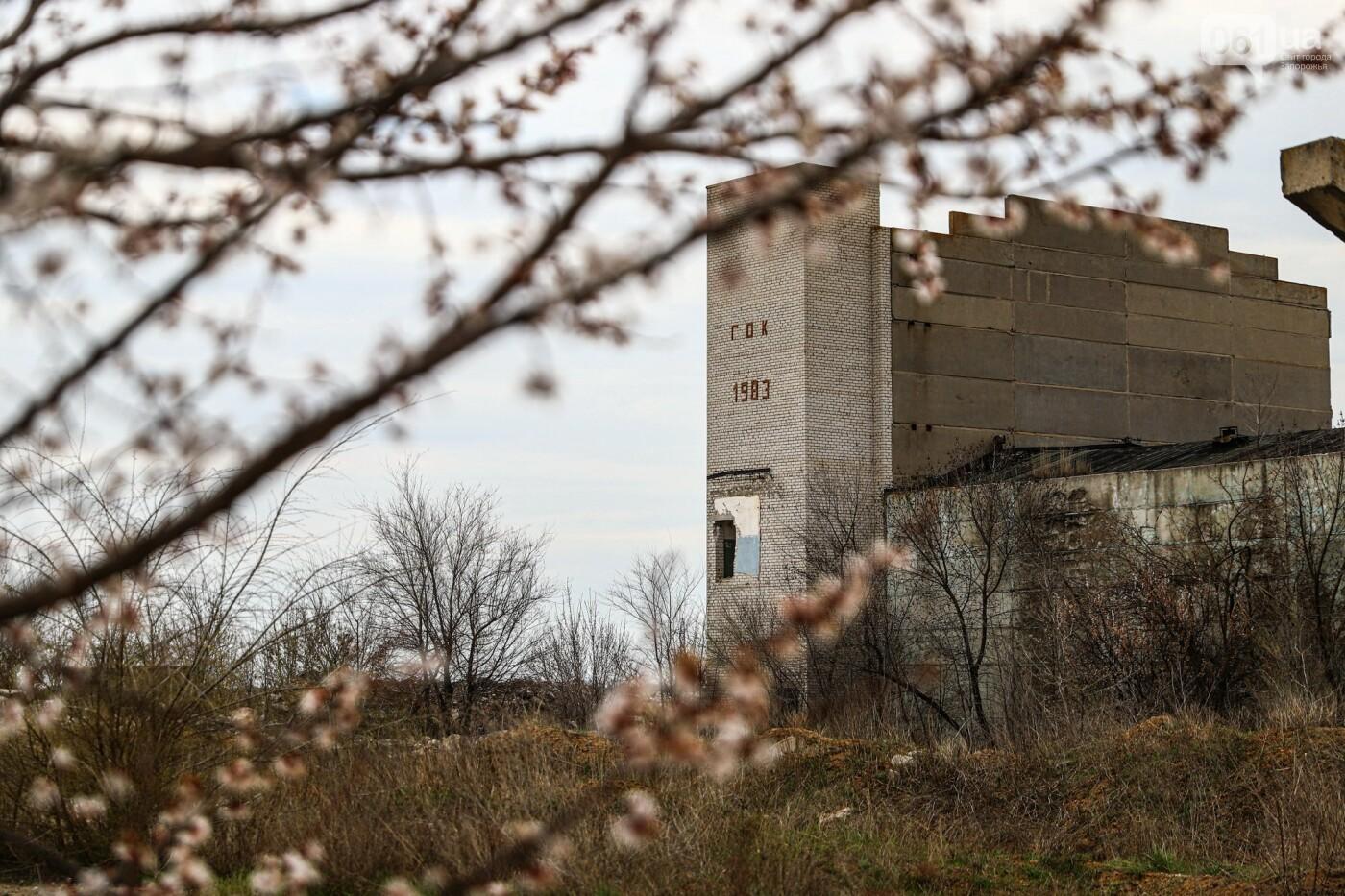 В Степногорске пытаются разобрать на металлолом шахту - промплощадка ГОКа превратилась в руины, - ФОТОРЕПОРТАЖ , фото-24