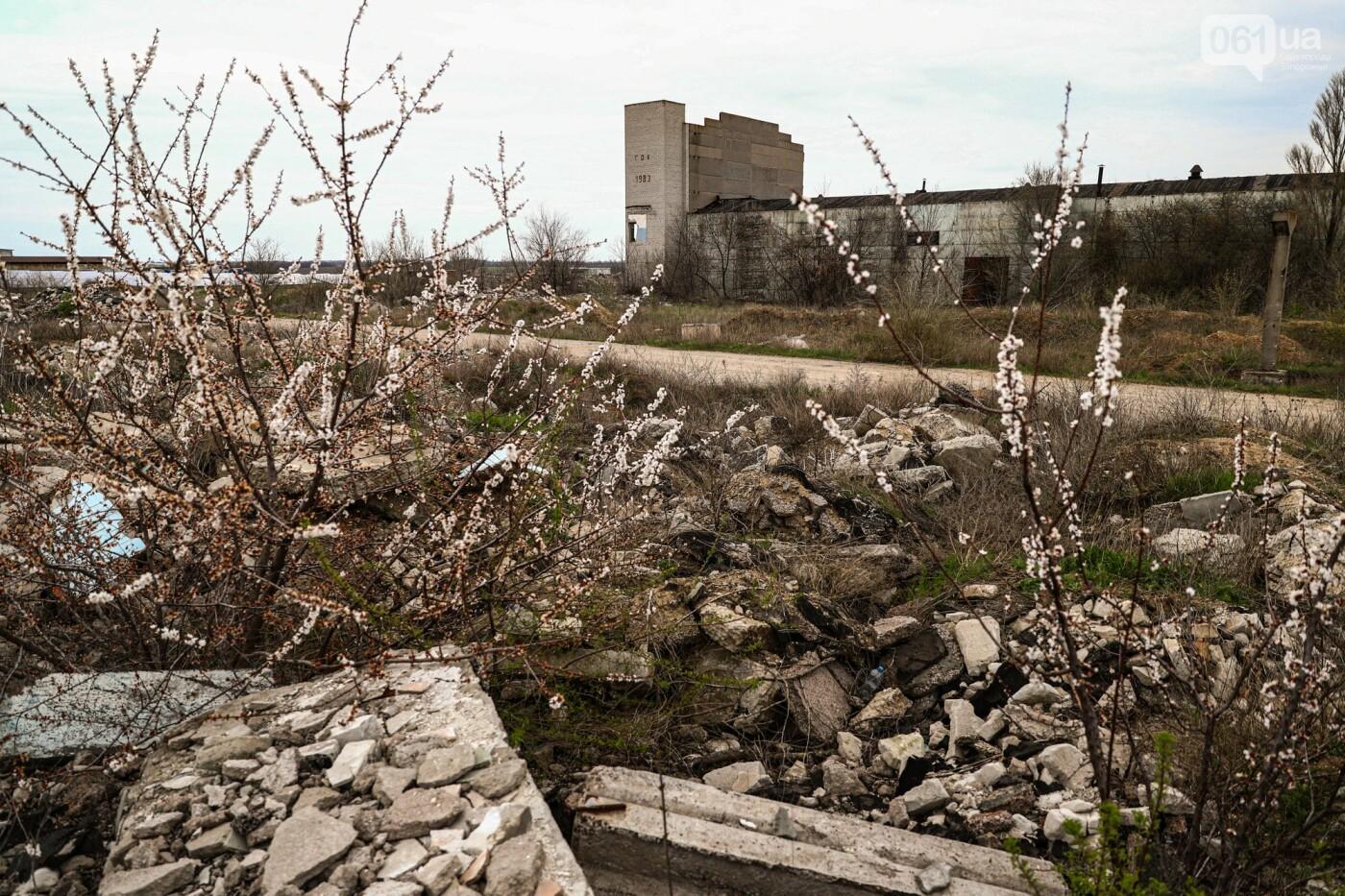 В Степногорске пытаются разобрать на металлолом шахту - промплощадка ГОКа превратилась в руины, - ФОТОРЕПОРТАЖ , фото-25