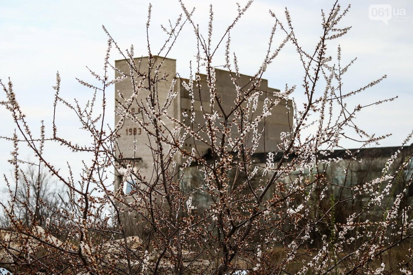 В Степногорске пытаются разобрать на металлолом шахту - промплощадка ГОКа превратилась в руины, - ФОТОРЕПОРТАЖ , фото-26
