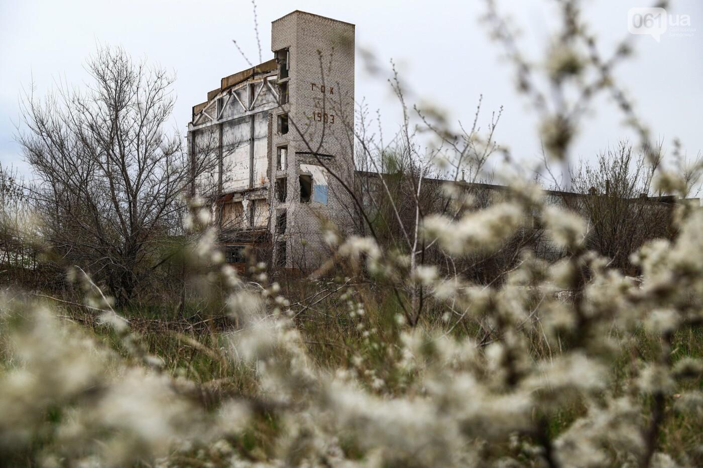 В Степногорске пытаются разобрать на металлолом шахту - промплощадка ГОКа превратилась в руины, - ФОТОРЕПОРТАЖ , фото-27