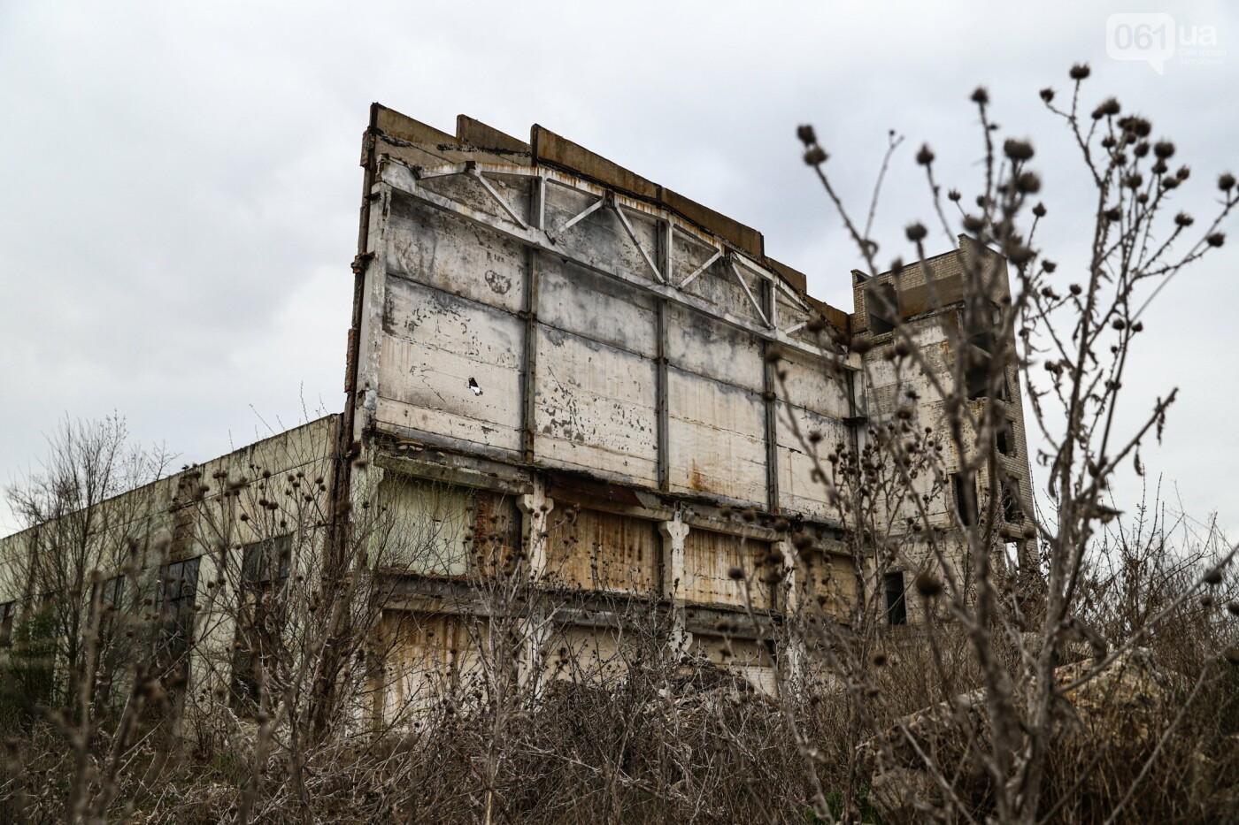 В Степногорске пытаются разобрать на металлолом шахту - промплощадка ГОКа превратилась в руины, - ФОТОРЕПОРТАЖ , фото-31