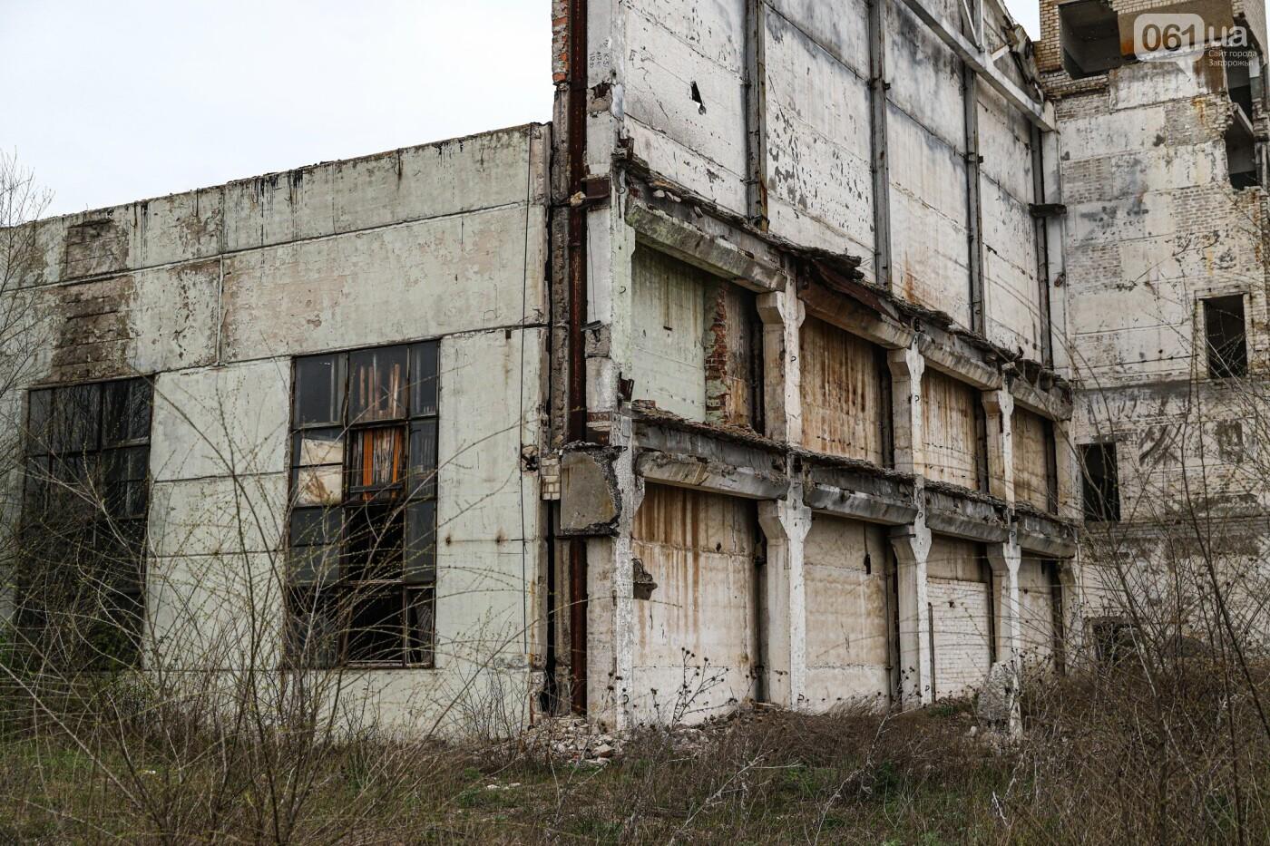 В Степногорске пытаются разобрать на металлолом шахту - промплощадка ГОКа превратилась в руины, - ФОТОРЕПОРТАЖ , фото-32