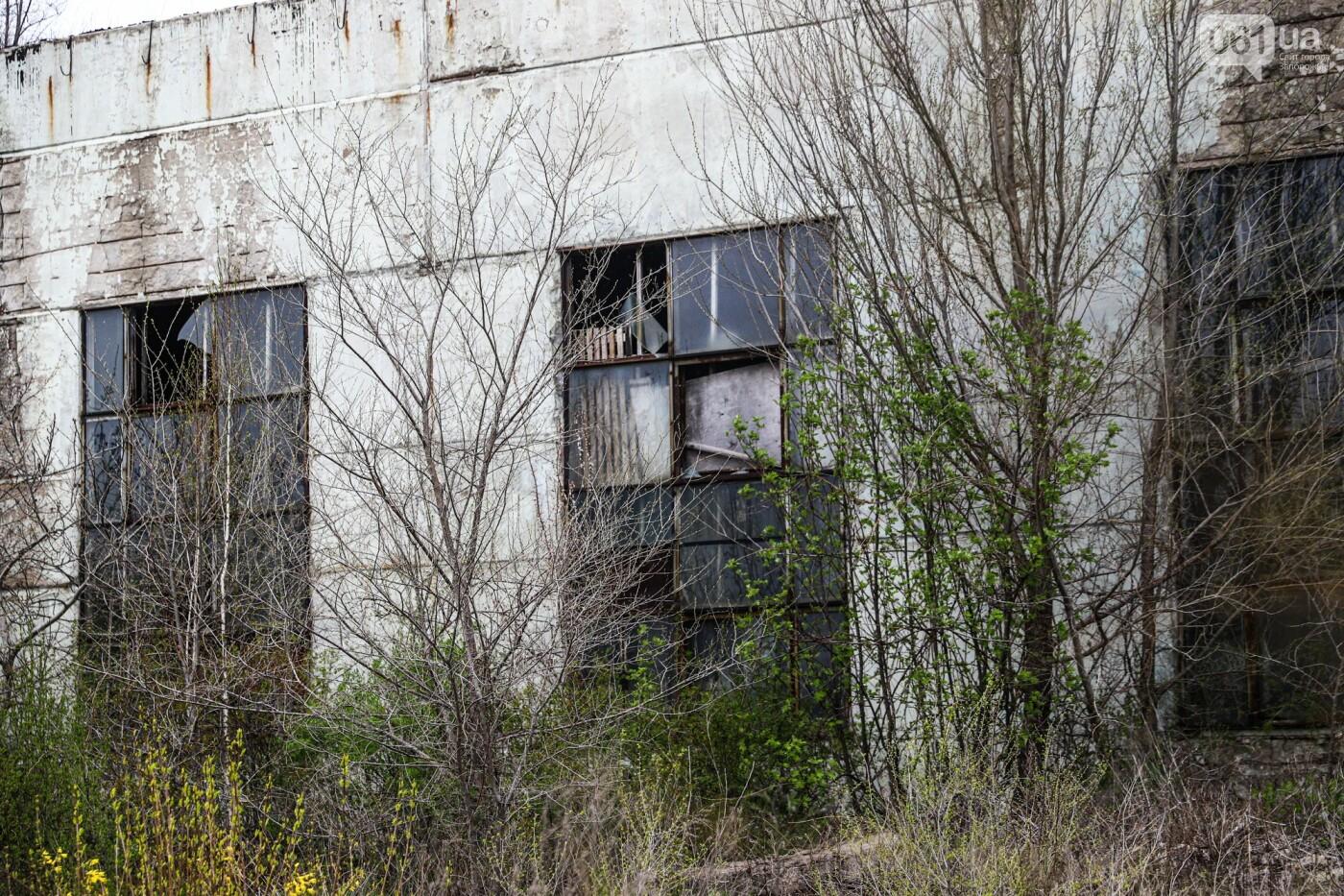 В Степногорске пытаются разобрать на металлолом шахту - промплощадка ГОКа превратилась в руины, - ФОТОРЕПОРТАЖ , фото-33