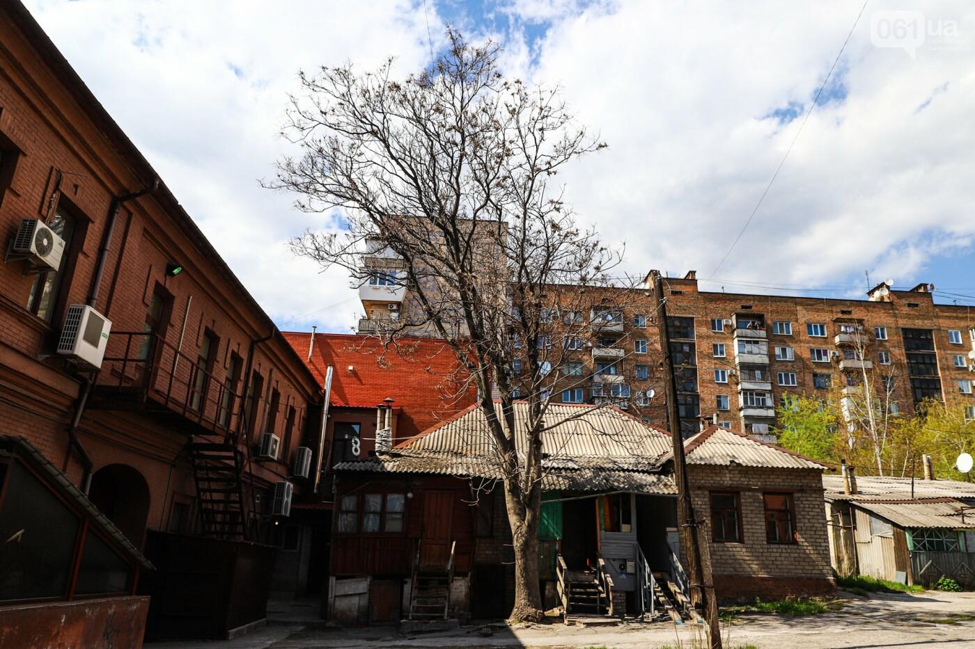Памятники Старого Александровска: как сейчас выглядит доходный дом Регирера, - ФОТО, фото-21