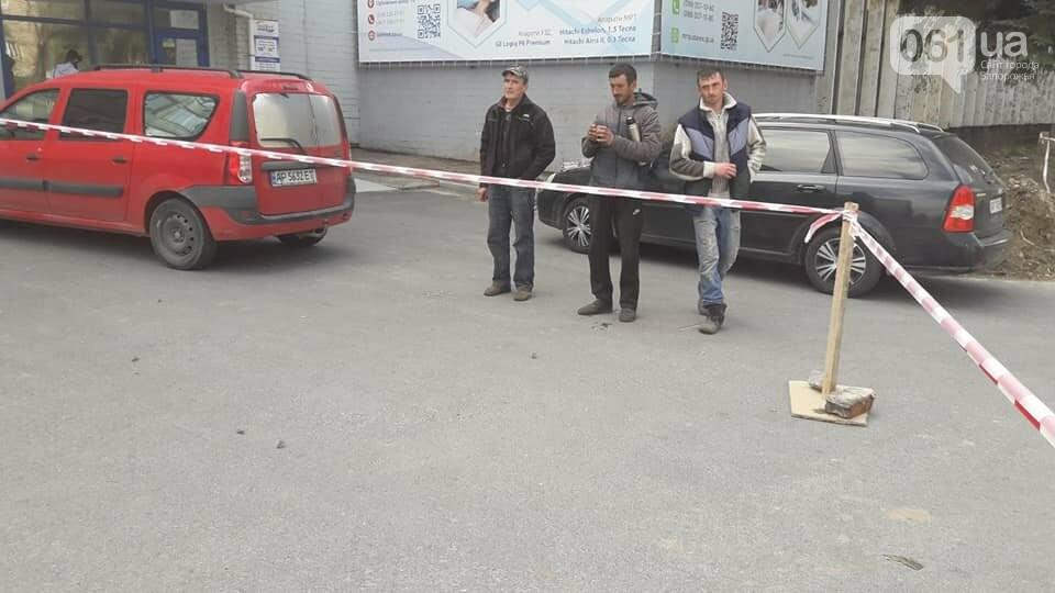 В Запорожье на Маяковского незаконно срубили огромные ели, - ФОТО , фото-7