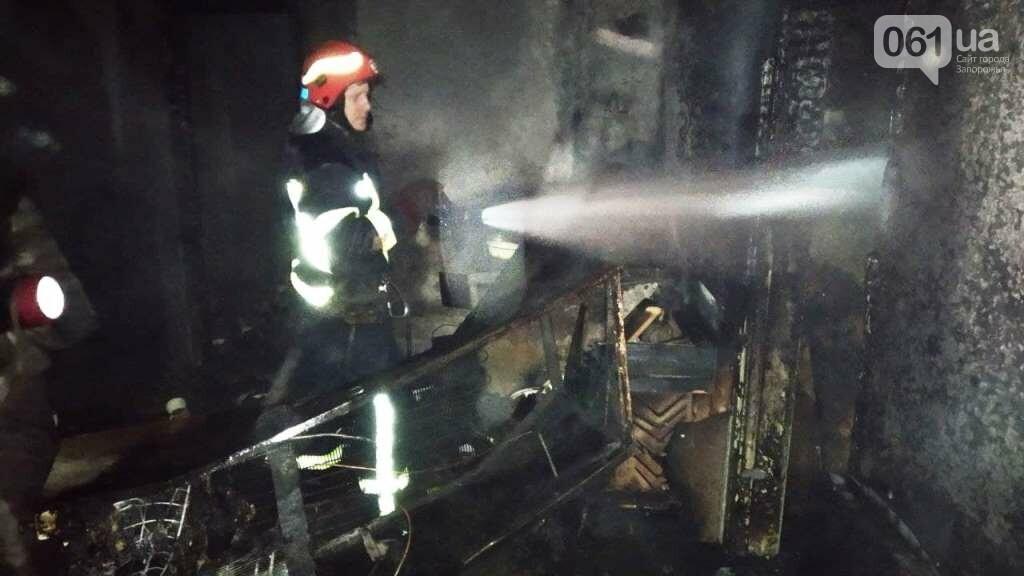 В Запорожской области мужчина травмировался во время пожара в жилом доме, фото-1