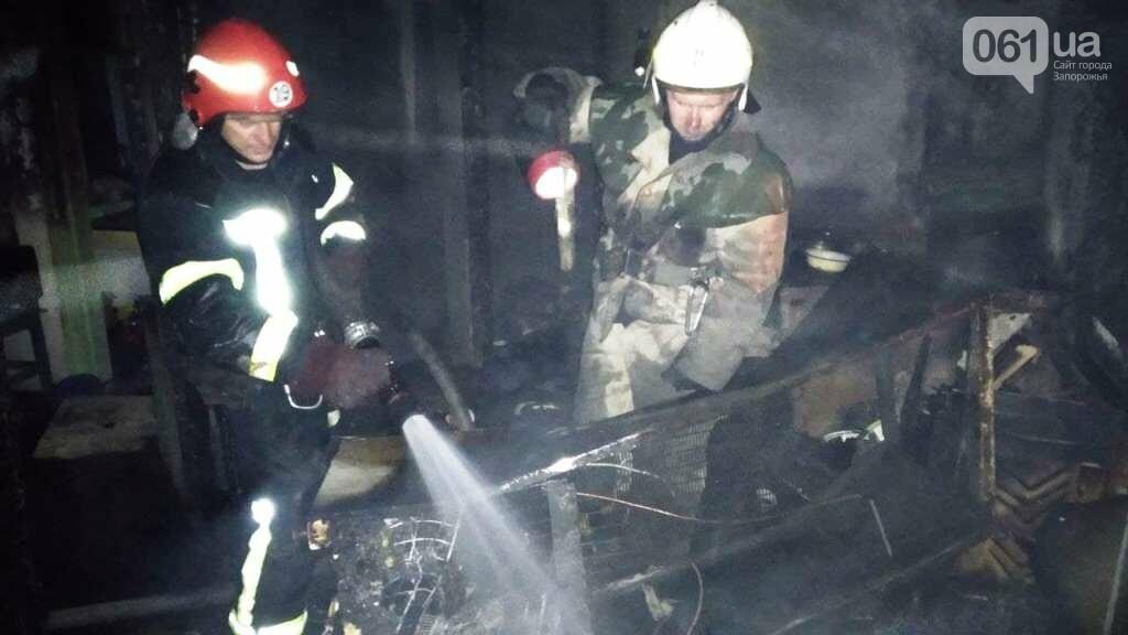 В Запорожской области мужчина травмировался во время пожара в жилом доме, фото-2