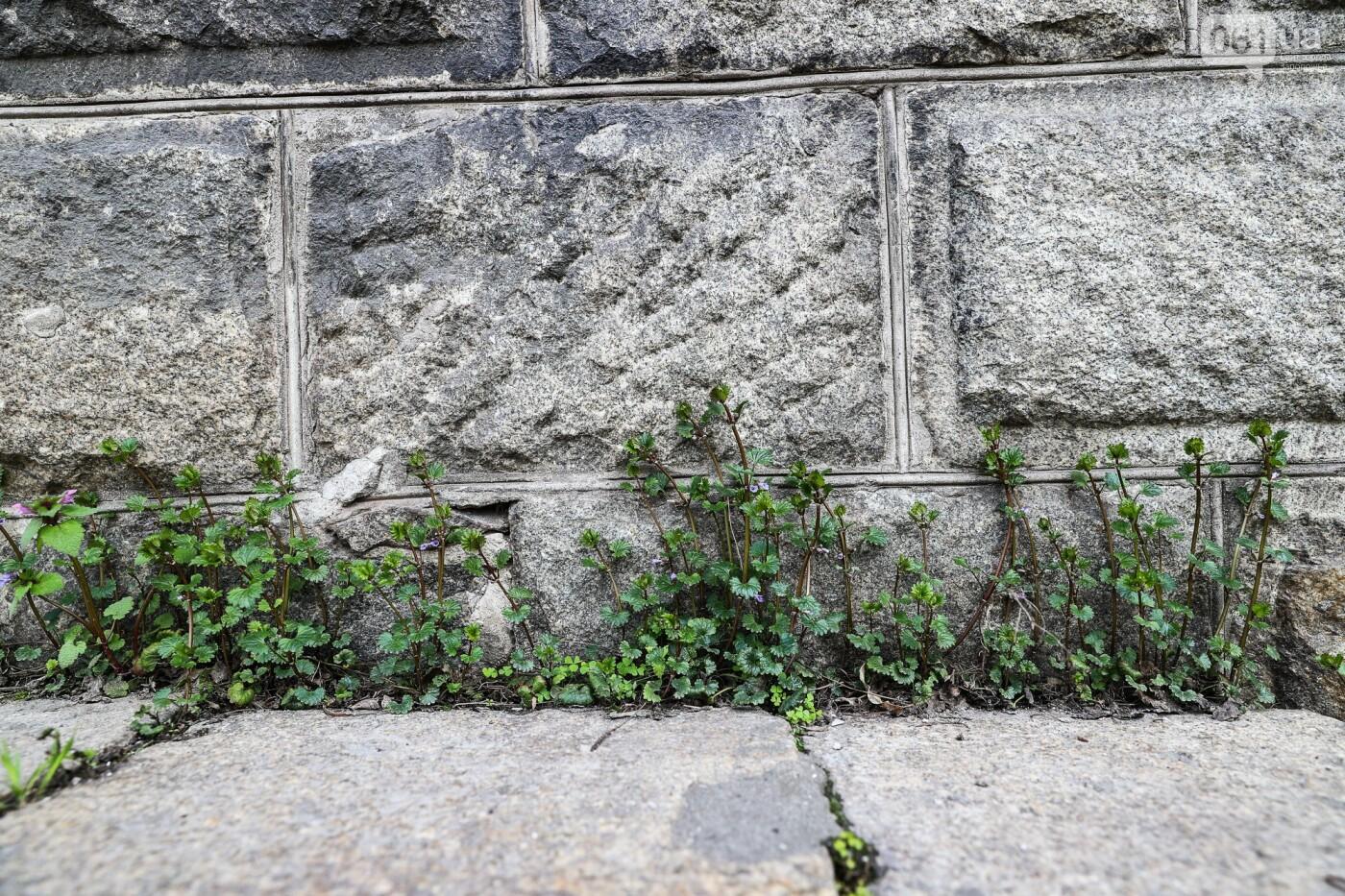 Памятники Старого Александровска: как сейчас выглядит здание первой в городе электростанции, - ФОТО, фото-24