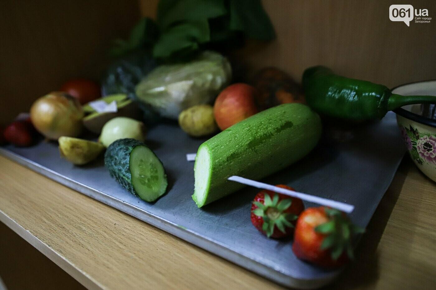В Запорожской области на рынках изъяли 17 тонн овощей с нитратами , фото-1