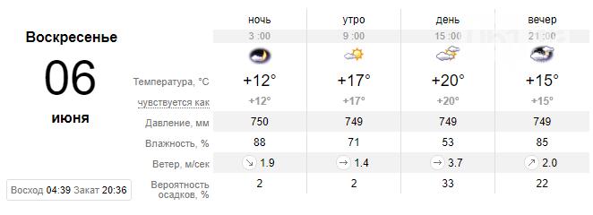 screenshot180 60ba1f977f321 - Погода в Запорожье на выходных будет теплой, дождей и гроз не предвидится