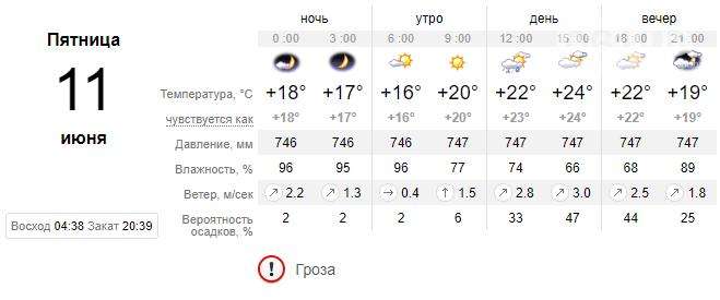 screenshot133 60c2290cce192 - Завтра погода в Запорожье вновь будет дождливой, обещают туман и грозы