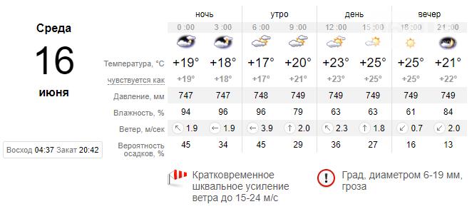 screenshot105 60c8c2a97ad24 - Погода в Запорожье не планирует меняться: период дождей и шквальных ветров продлится