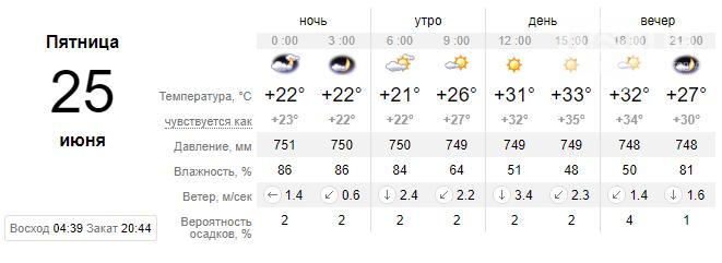 screenshot136 60d49e1de9517 - Завтра ожидается самый жаркий день недели, - погода в Запорожье 25 июня