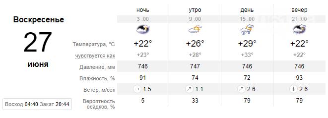 screenshot155 60d5d12545c98 - Выходные будут дождливыми, обещают шквал до 20 м/с и град, - погода в Запорожье 26-27 июня