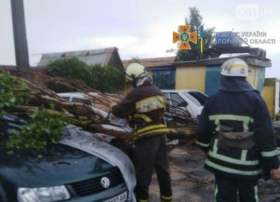 photo2021 07 0508 11 04result 60e2a7dc09a10 - В Бердянске из-за непогоды обесточило сотню баз отдыха и повалило деревья
