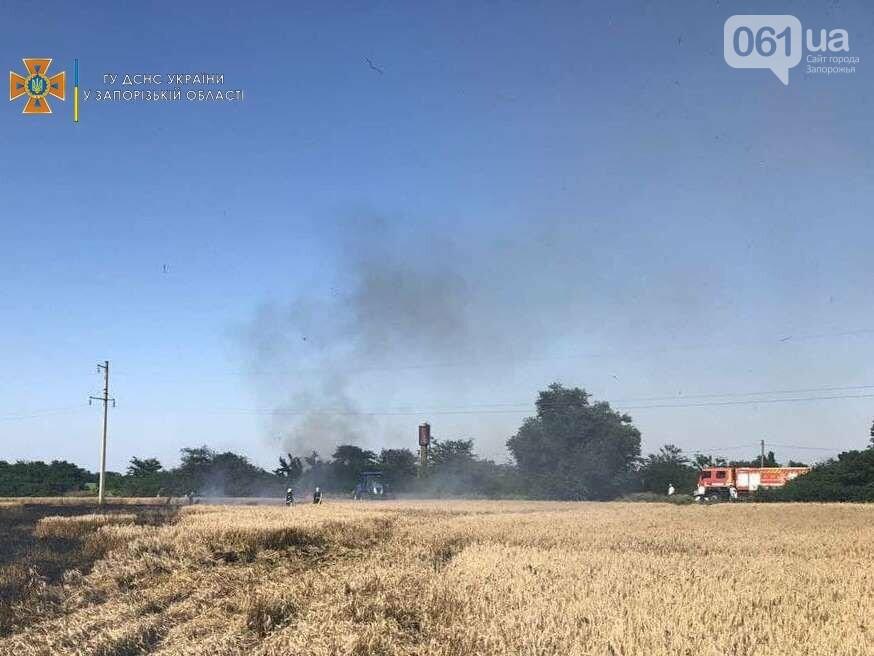photo2021 07 1010 21 49result 60e98fa6c88fe - В Запорожской области едва не сгорели крупные посевы пшеницы