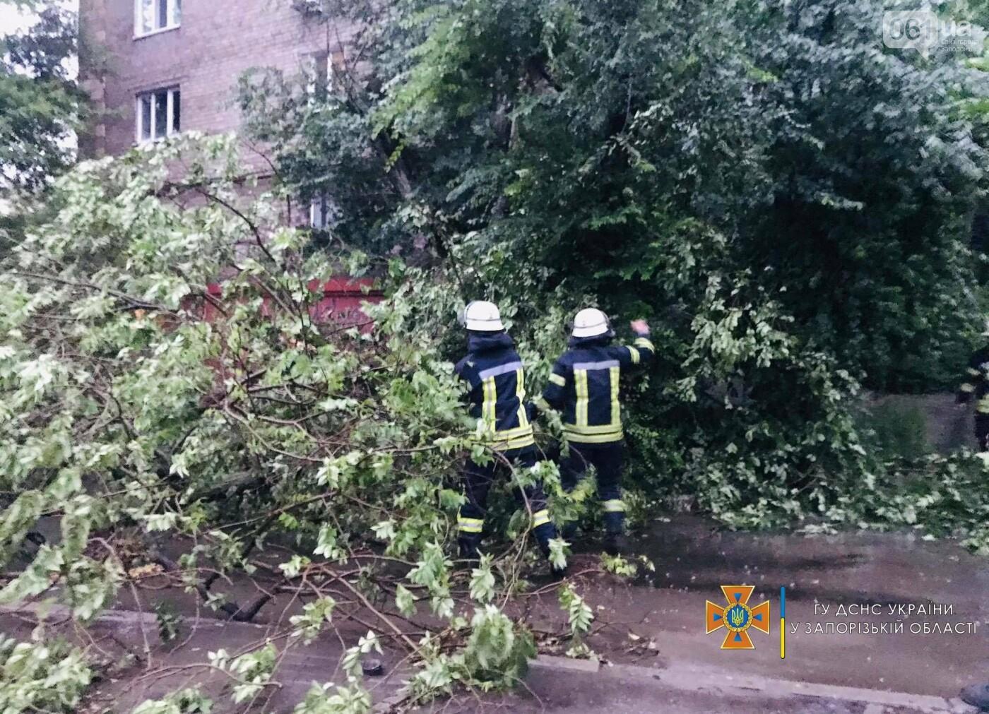 2060189362738491944986402666108503616981085nresult 60ed324f0a9da - Непогода в Запорожской области: поваленные деревья и подтопленный дом