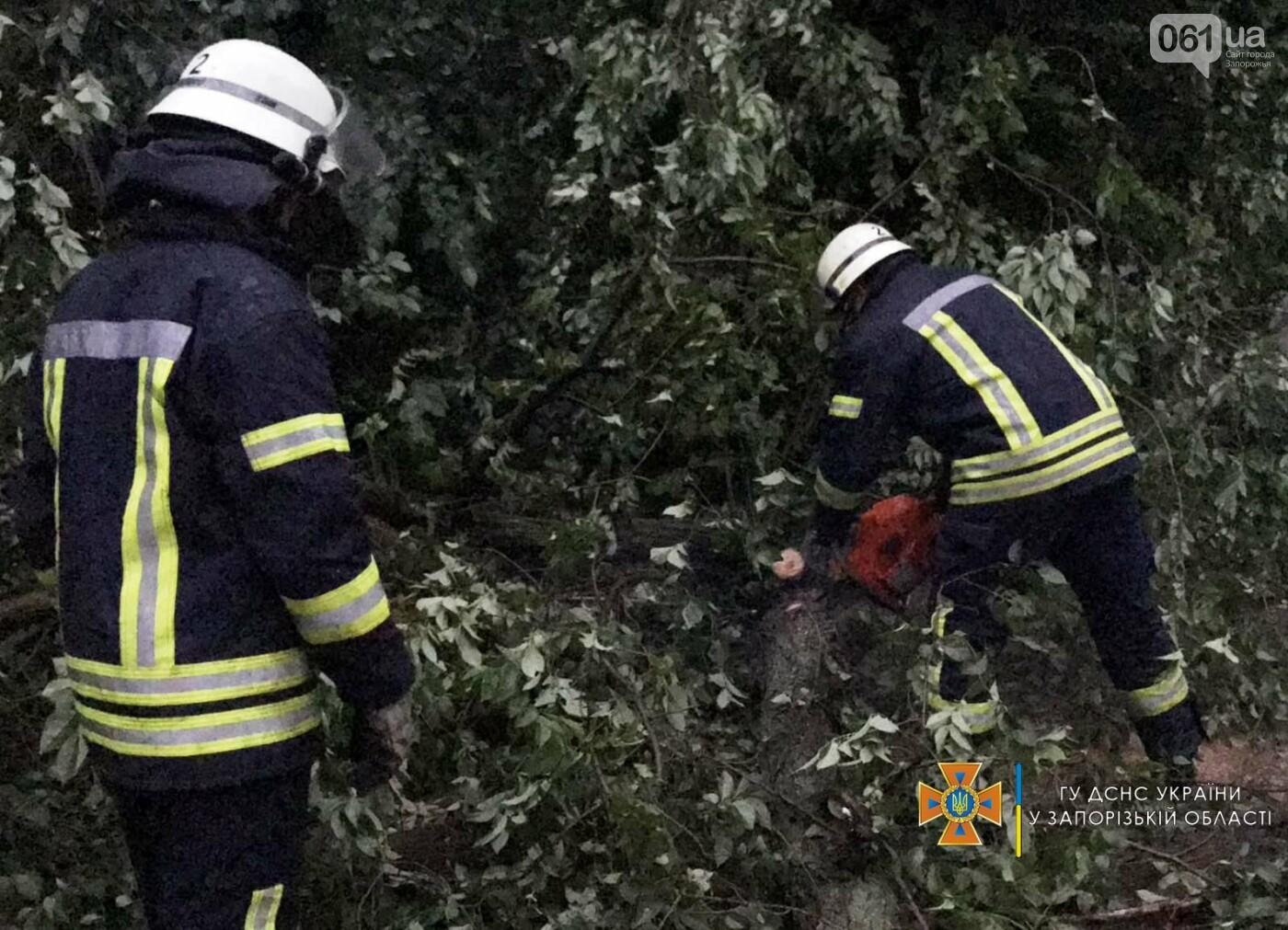 2073271292455712504463066493157963790864087nresult 60ed32500c238 - Непогода в Запорожской области: поваленные деревья и подтопленный дом