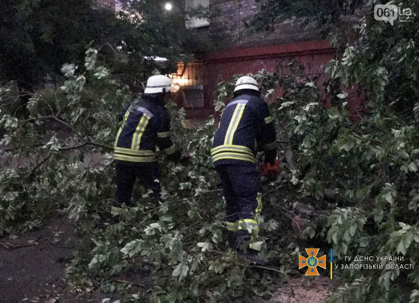 212006205558856421786960674055899955527326nresult 60ed3250b9d8d - Непогода в Запорожской области: поваленные деревья и подтопленный дом