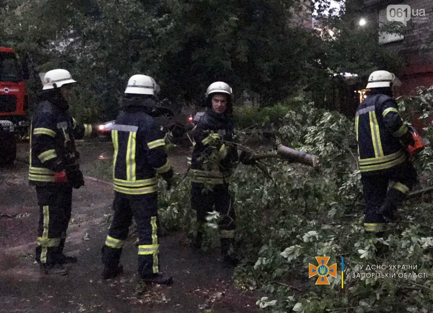 21530465316661020235878925897596901782127101nresult 60ed32525e937 - Непогода в Запорожской области: поваленные деревья и подтопленный дом
