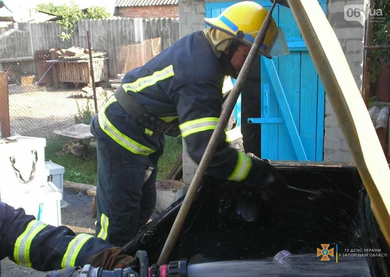 В Запорожской области четверо спасателей тушили горящую «Волгу», фото-1