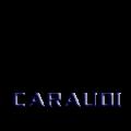 Caraudi разборка, обслуживание, ремонт автомобилей в Запорожье