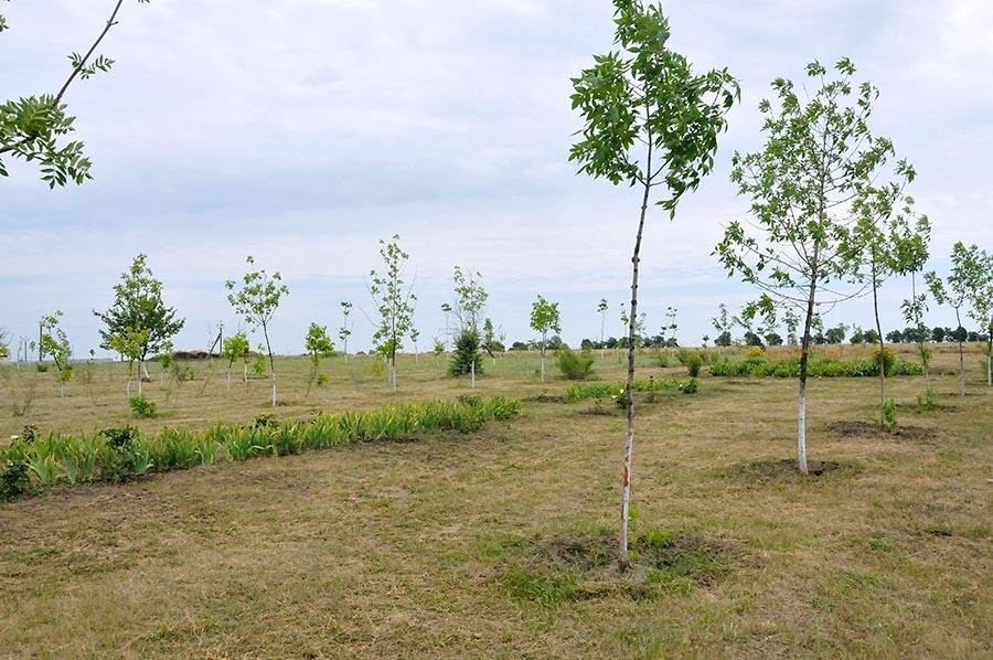 В Кушугуме появится парк со сценой,  - ФОТО, фото-2