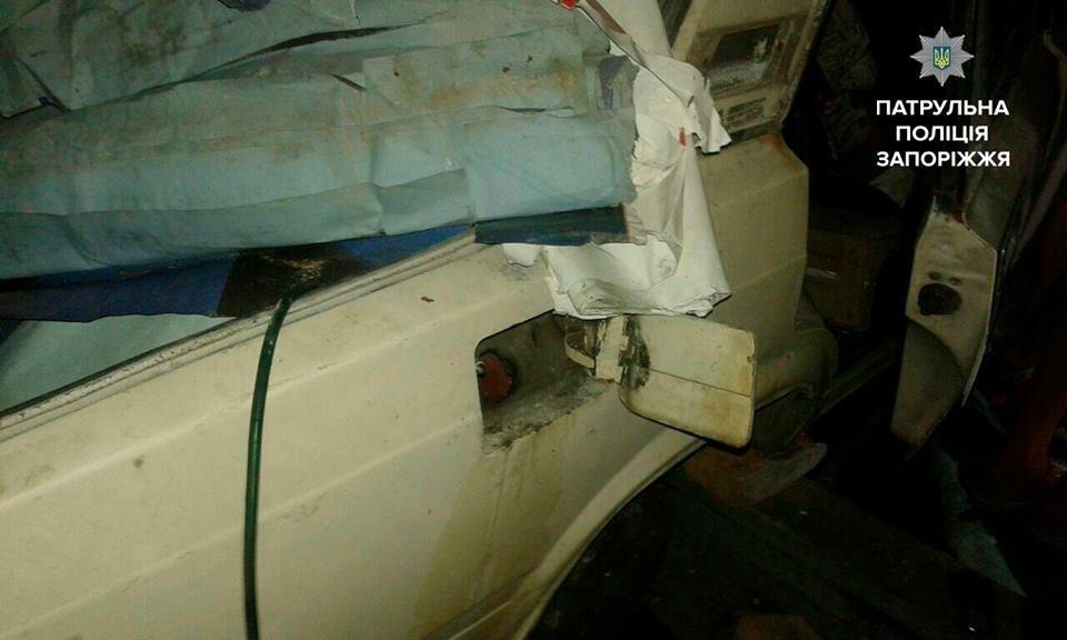 В Запорожье женщина обнаружила в своем гараже троих воров, - ФОТО, фото-2