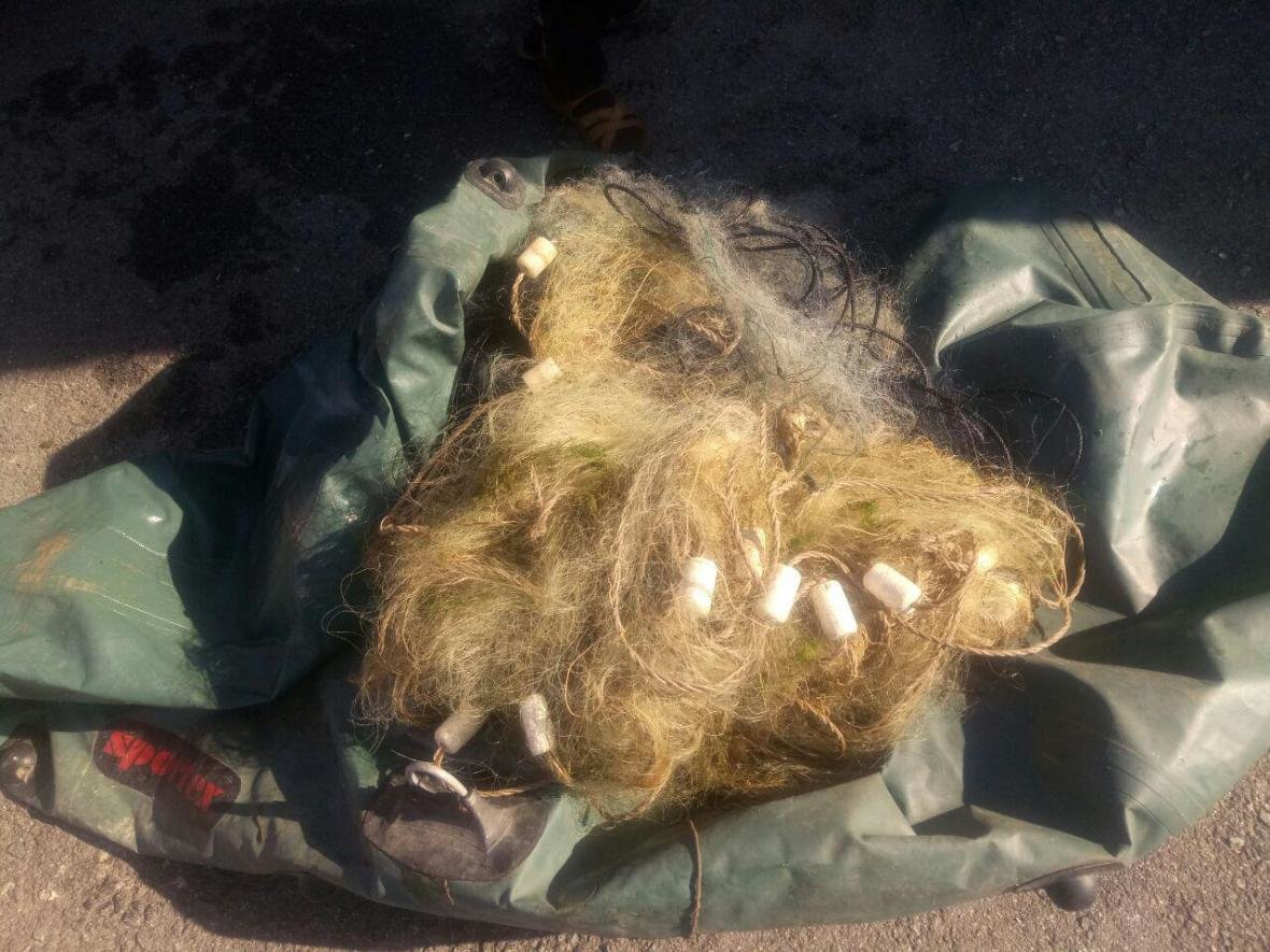 За месяц работы в Запорожье рыбоохранный патруль зафиксировал почти 300 нарушений, — ФОТО, фото-3