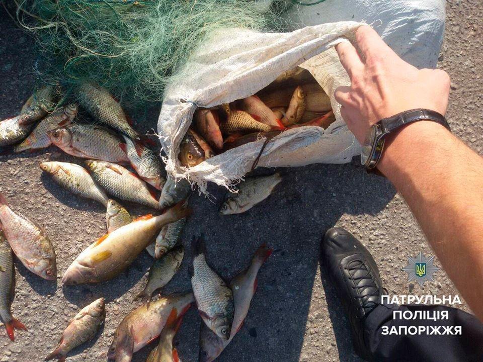 На трассе Днепр-Запорожье полиция задержала браконьеров с мешком рыбы, - ФОТО, фото-2