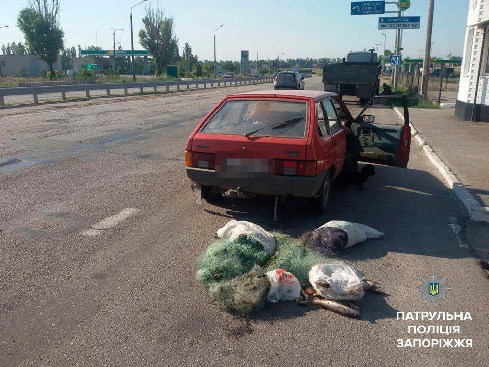 На трассе Днепр-Запорожье полиция задержала браконьеров с мешком рыбы, - ФОТО, фото-3