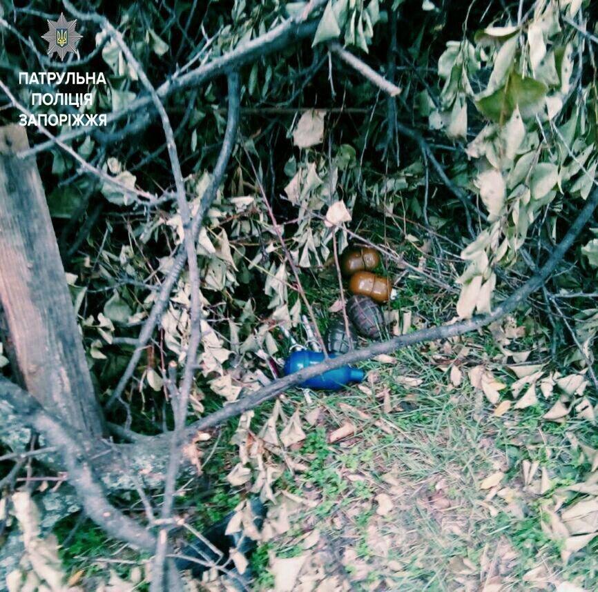 Возле запорожской школы в кустах нашли 5 гранат, — ФОТО, фото-2