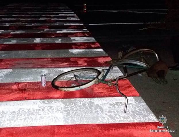 На запорожской трассе насмерть сбили велосипедиста, — ФОТО, фото-3