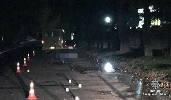 """Возле """"Запорожстали"""" насмерть сбили женщину: полиция ищет свидетелей, - ФОТО, фото-1"""