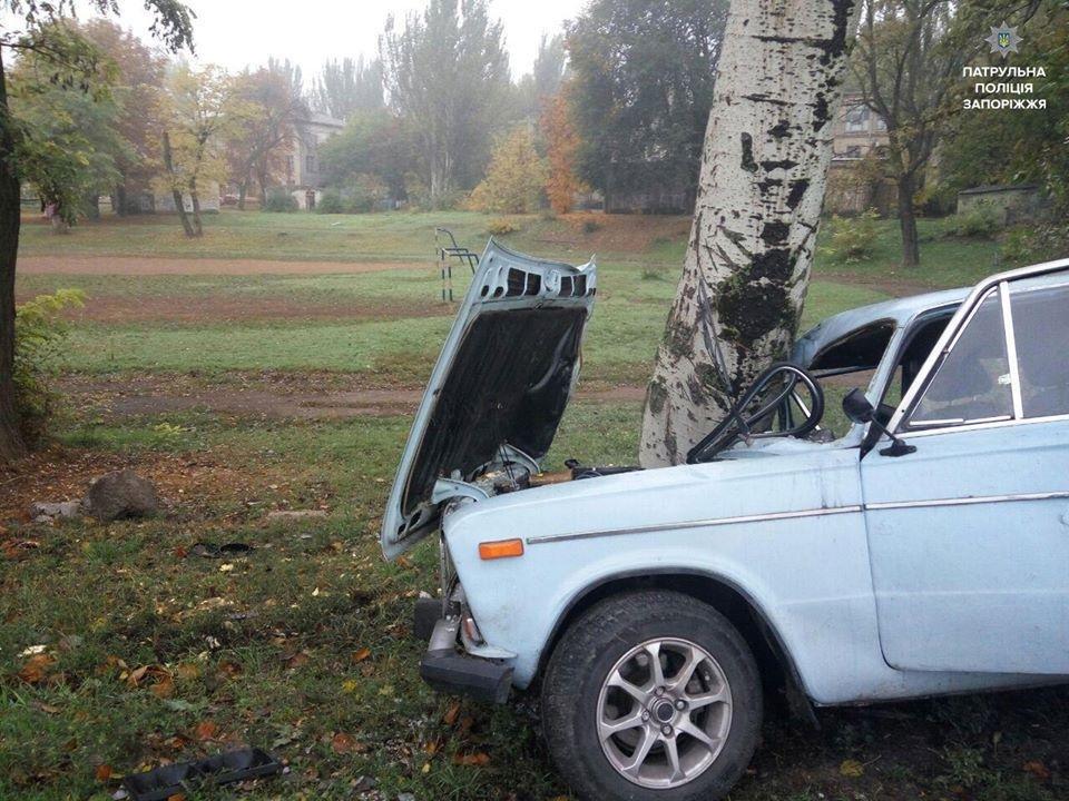 В Заводском районе Запорожья ВАЗ протаранил дерево, - ФОТО, фото-1