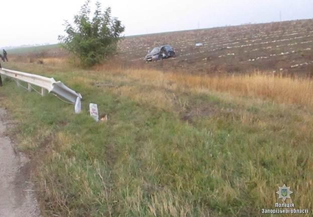 В ДТП в Запорожской области погибла замдиректора Днепровского Национального музея, - ФОТО, фото-1