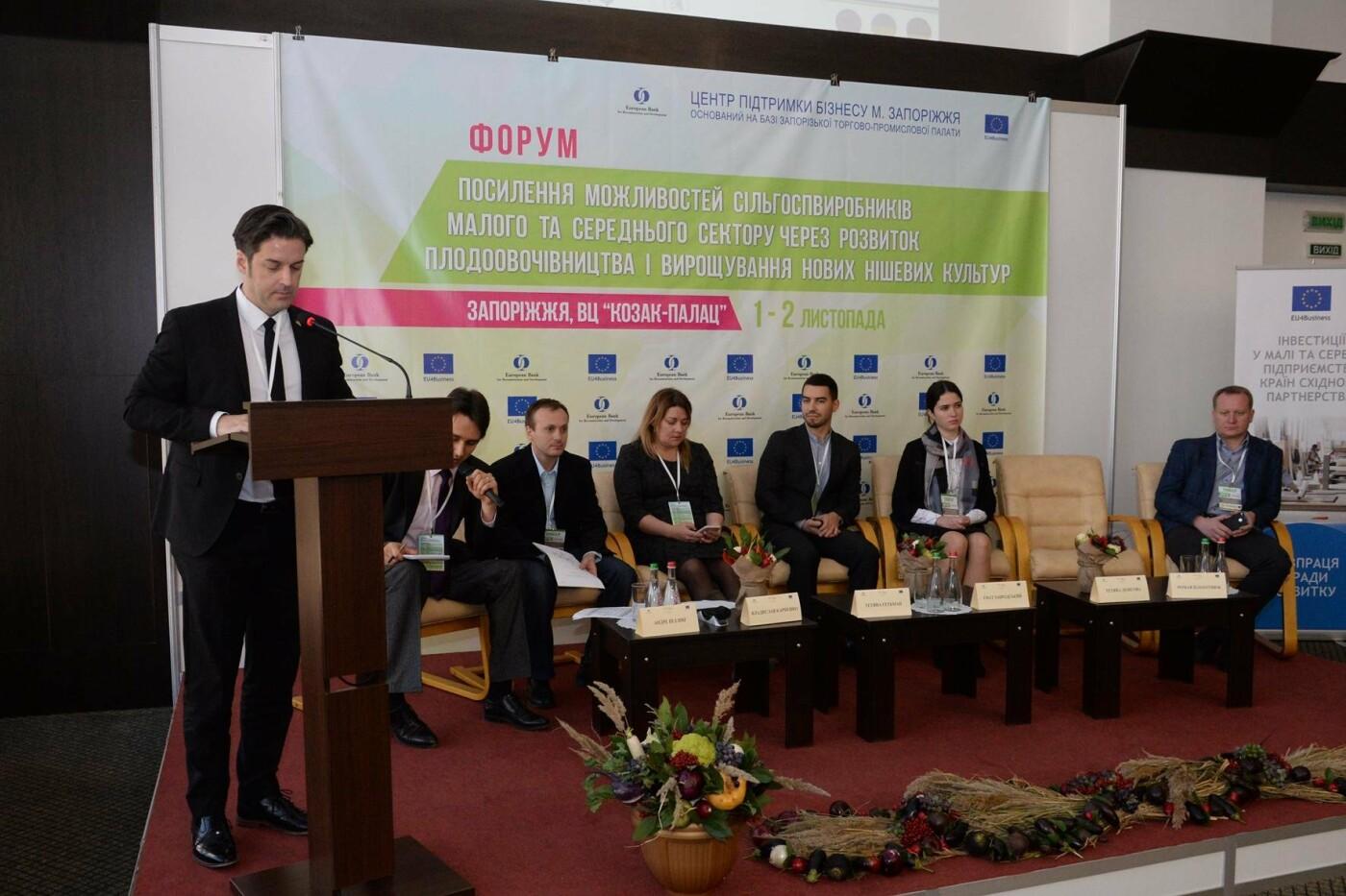 У ВЦ «Козак-Палац» відбувся аграрний форум, фото-2