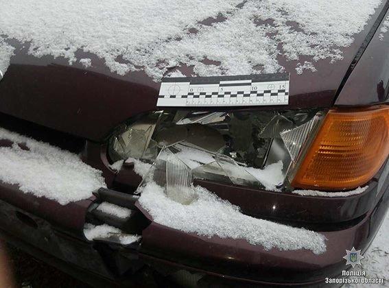 В Запорожской области водитель на переходе насмерть сбил женщину и скрылся: его нашли, - ФОТО , фото-1