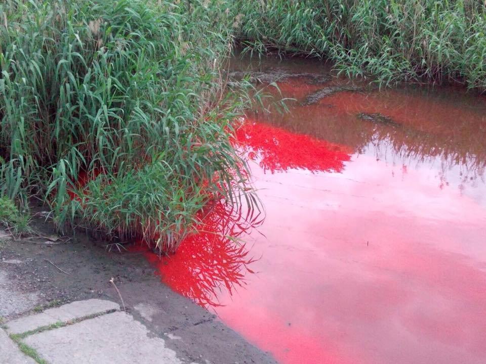 В Запорожье река окрасилась в ярко-красный цвет, - ФОТО, фото-3