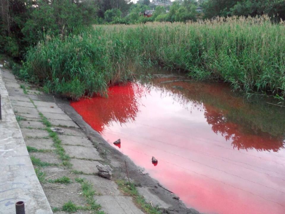 В Запорожье река окрасилась в ярко-красный цвет, - ФОТО, фото-2