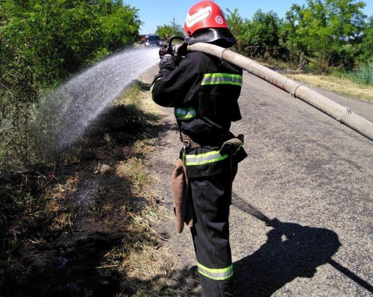 В Запорожской области за сутки тушили 35 пожаров в степи, фото-1