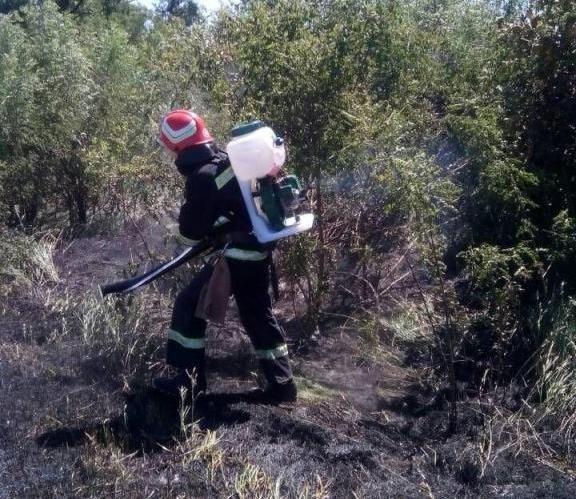 В Запорожской области за сутки тушили 35 пожаров в степи, фото-2