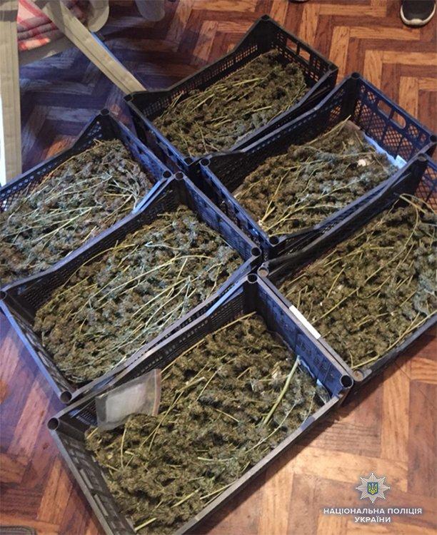 У запорожца обнаружили 6 ящиков марихуаны, – ФОТО, фото-2