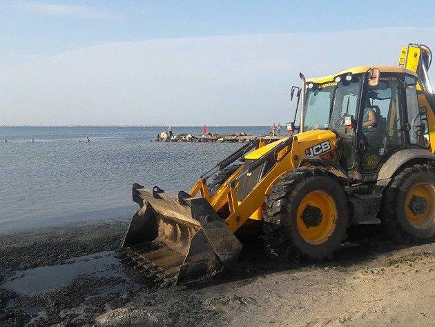 С бердянского пляжа коммунальщики вывезли 12 КамАЗов водорослей, – ФОТО, фото-1