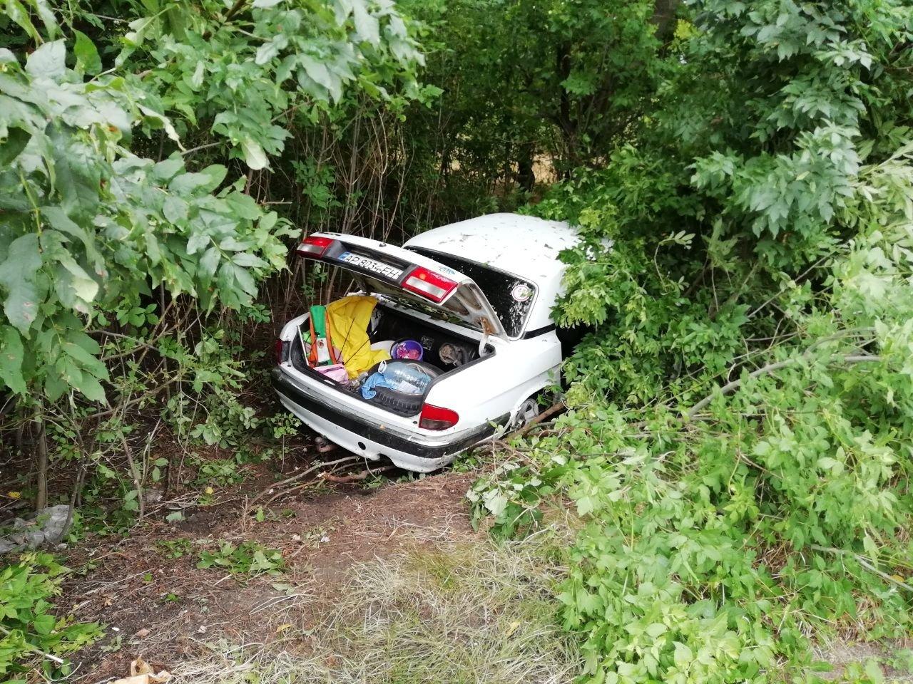 """В Запорожье """"Волга"""" с пьяным водителем и пассажирами, слетела с дороги, госпитализированы два человека, фото-2"""