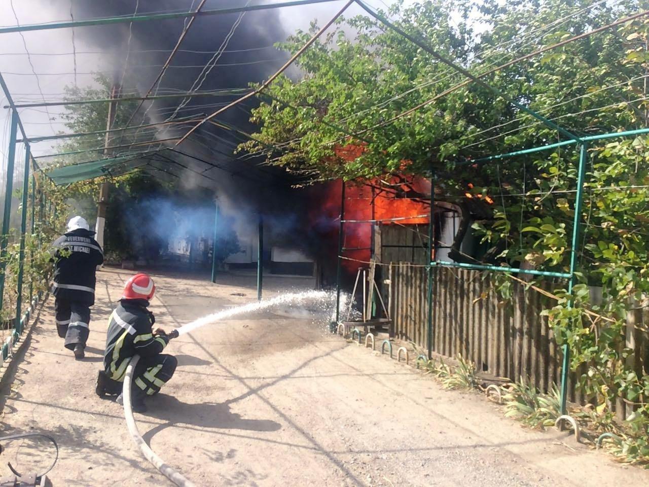 В Запорожской области потушили большой пожар в частном дворе, – ФОТО, фото-1