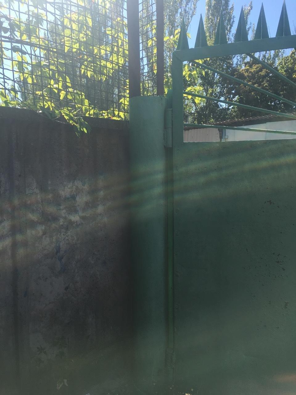 В Запорожье спасатели вытащили из металлической трубы двоих застрявших котят, – ФОТО, фото-1