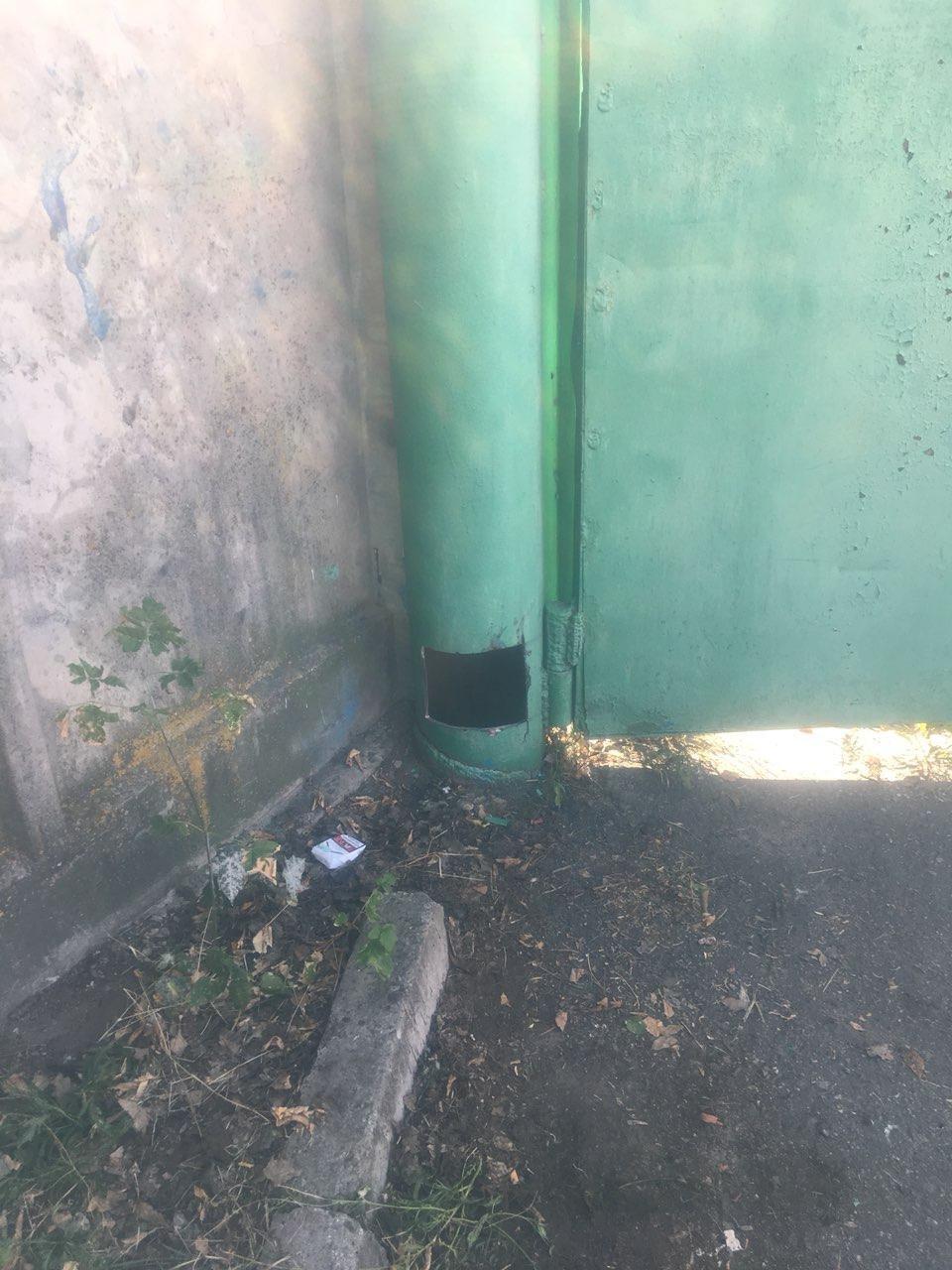 В Запорожье спасатели вытащили из металлической трубы двоих застрявших котят, – ФОТО, фото-3