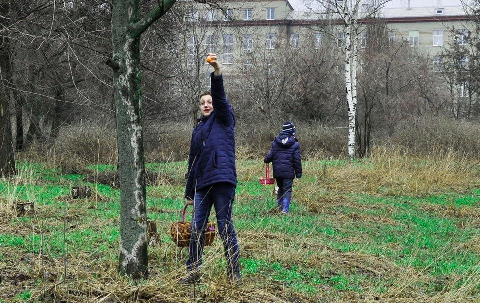 Курсы и Образование в Запорожье, фото-62