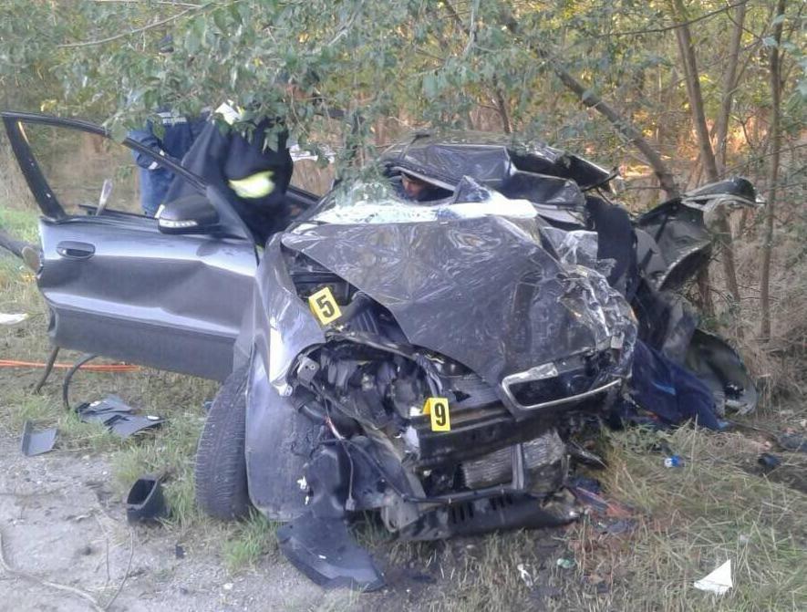 В лобовом столкновении на запорожской трассе погибли 4 человека: еще 2 – пострадали, – ФОТО, фото-1